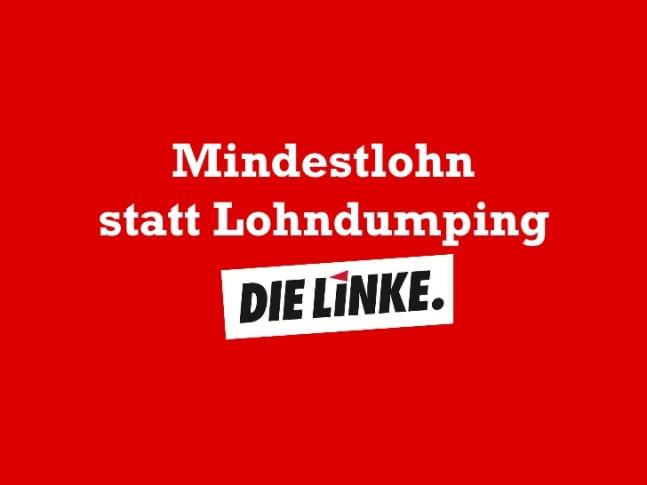 die-linke-mindestlohn-1-728